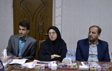 کارگروه بررسی تنقیح قوانین ورزش باحضور رحمت اله نوروزی